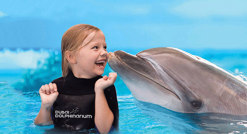 Swim-with-Dolphins,-Sharks,-and-Sea-Lions