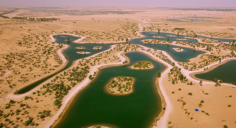 al-qudra-lakes-dubai