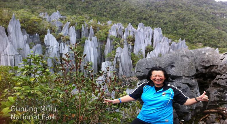 Gunung Mulu National Park