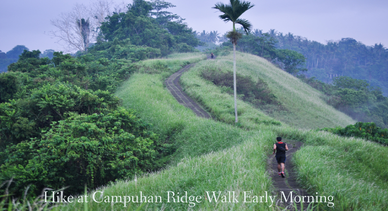 Hike at Campuhan Ridge Walk Early Morning